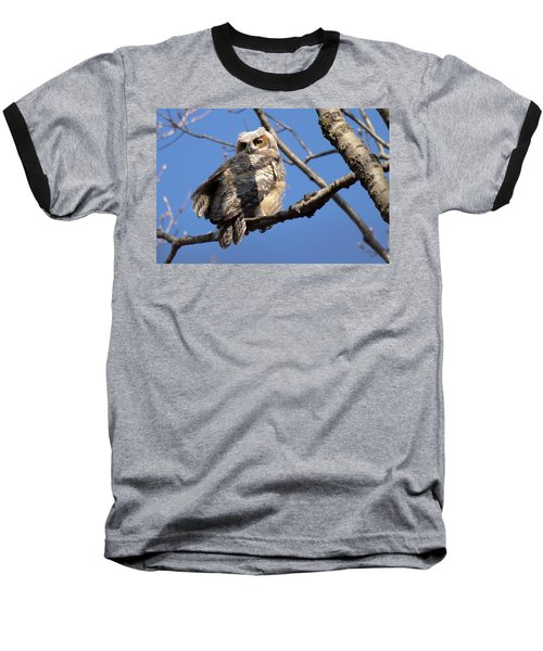 Great Horned Owlet 42915 Baseball T-Shirt