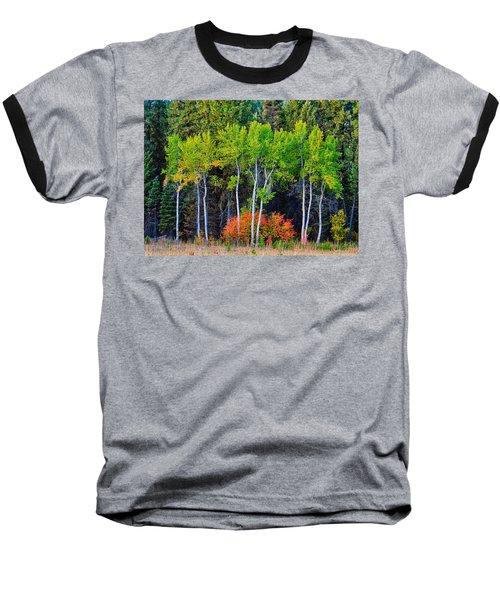 Green Aspens Red Bushes Baseball T-Shirt