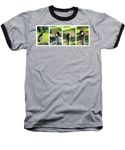 Grey Crowned Crane Gulf Shores Al Collage 1 Baseball T-Shirt