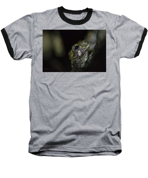 Grey Tree Frog Baseball T-Shirt