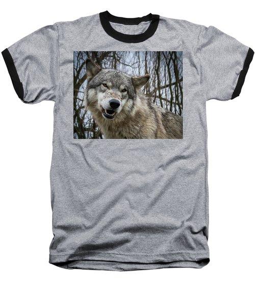 Grrrrrrrr Baseball T-Shirt