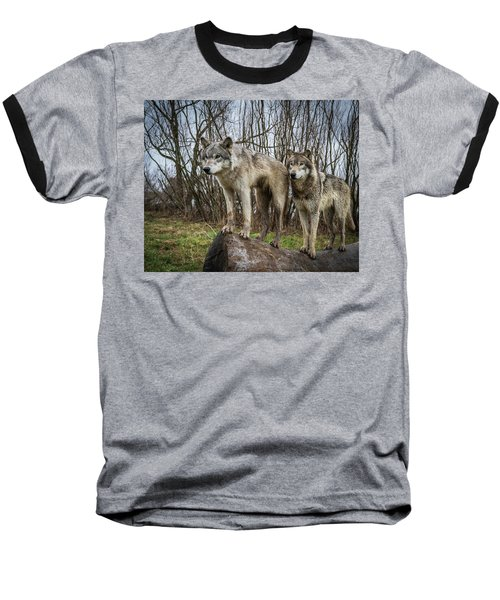 Hangin On The Log Baseball T-Shirt