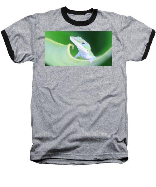 Hello, Anole. 2 Baseball T-Shirt
