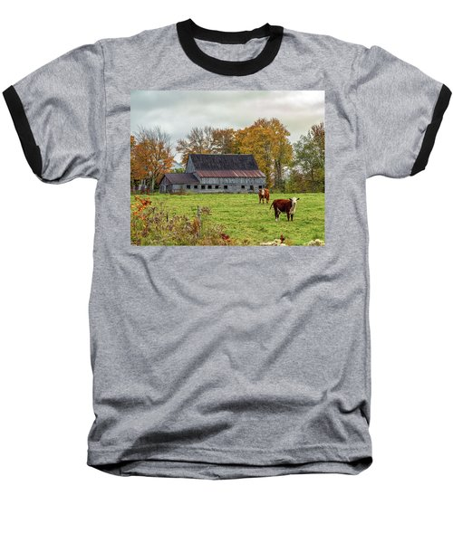 Herefords In Fall Baseball T-Shirt