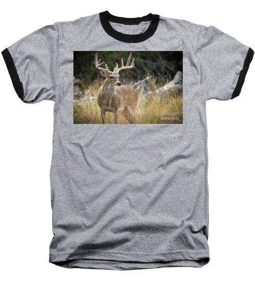 Hill Country Whitetail Baseball T-Shirt