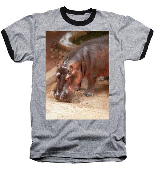 Hippopotamus Baseball T-Shirt