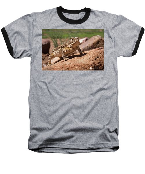 Horny Toad Baseball T-Shirt