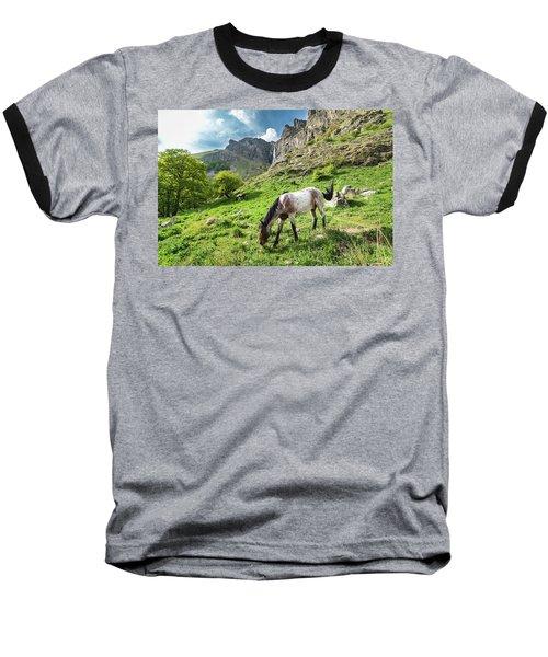 Horse On Balkan Mountain Baseball T-Shirt