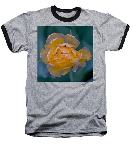 Illuminated Tulip Baseball T-Shirt