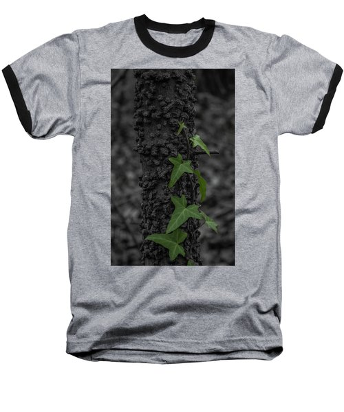 Industrious Ivy Baseball T-Shirt
