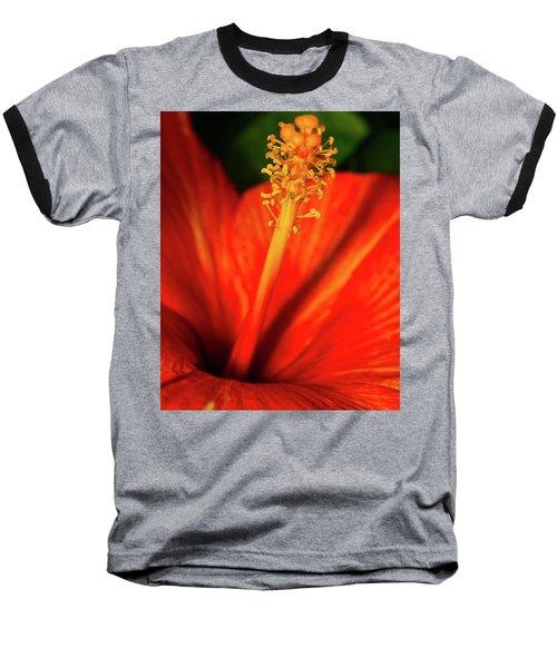 Into A Flower Baseball T-Shirt