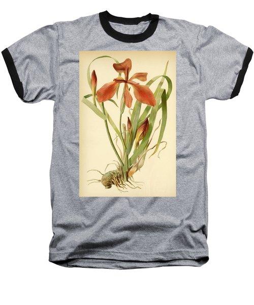 Iris Cuprea Copper Iris.  Baseball T-Shirt