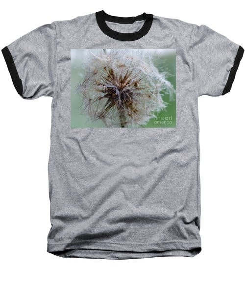 Irish Daisy Baseball T-Shirt