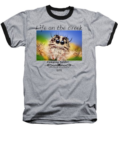 Jumping Spider Colonus Hesperus Baseball T-Shirt