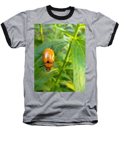 June Bug Baseball T-Shirt