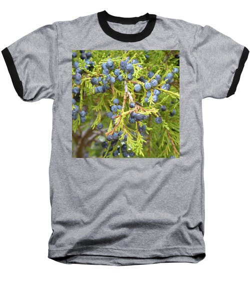 Juniper Berries Baseball T-Shirt