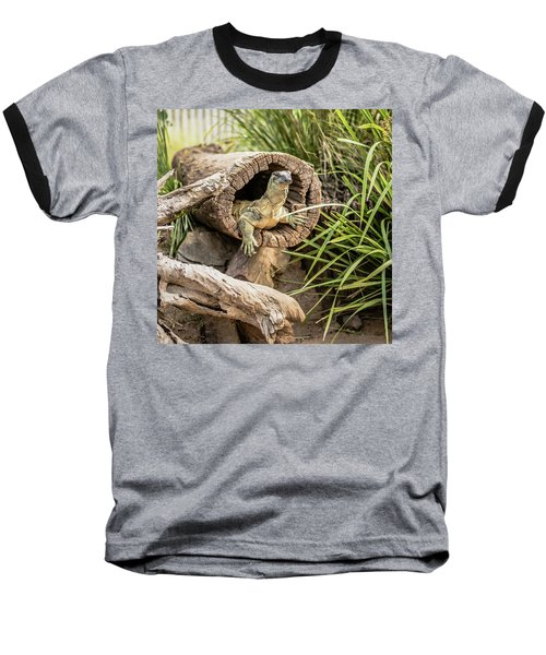 Lace Monitor During The Day. Baseball T-Shirt