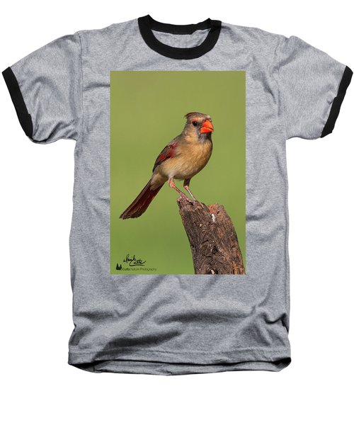 Lady Cardinal Baseball T-Shirt