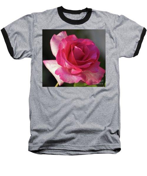 Late October Rose Baseball T-Shirt
