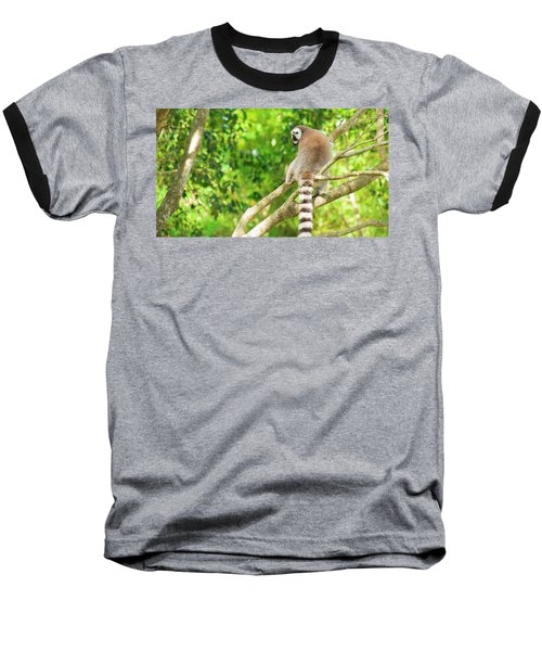 Lemur By Itself In A Tree During The Day. Baseball T-Shirt