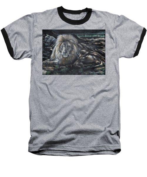 Lion In Dappled Shade Baseball T-Shirt