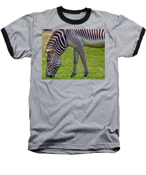 Love Zebras Baseball T-Shirt