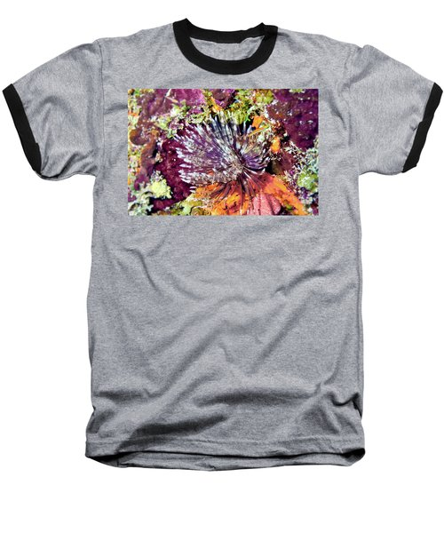 Magnificent Feather Duster Baseball T-Shirt
