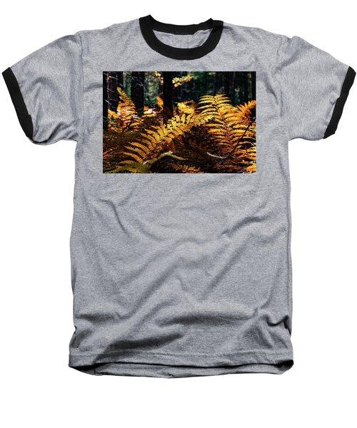 Maine Autumn Ferns Baseball T-Shirt