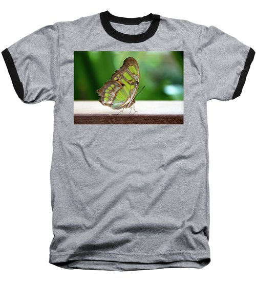 Malachite Butterfly Profile Baseball T-Shirt