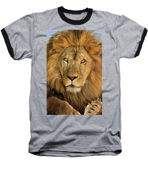 Male African Lion Portrait Wildlife Rescue Baseball T-Shirt