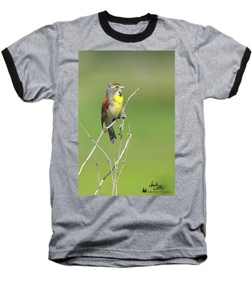 Male Dickcissel Baseball T-Shirt