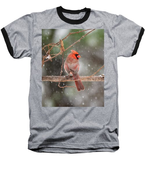 Male Red Cardinal Snowstorm Baseball T-Shirt