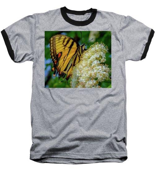 Manassas Butterfly Baseball T-Shirt