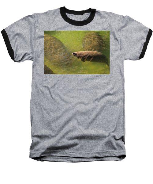 Manatees Baseball T-Shirt