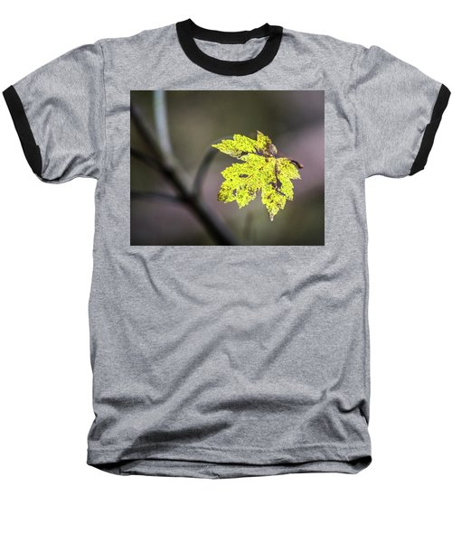 Baseball T-Shirt featuring the photograph Maple Bright by Michael Arend