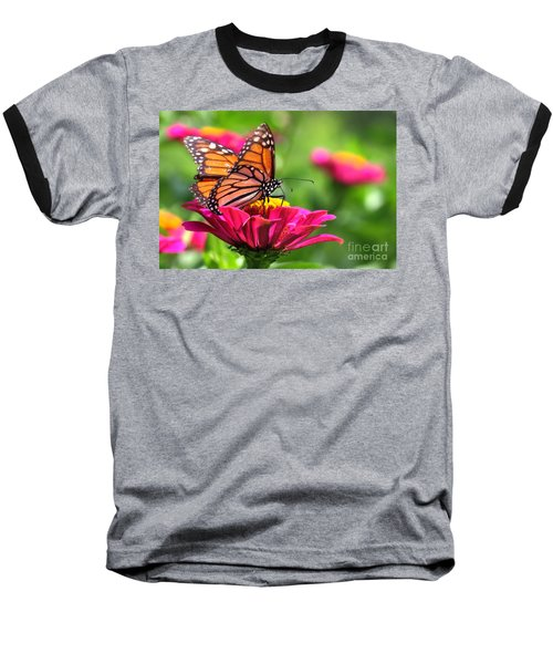 Monarch Visiting Zinnia Baseball T-Shirt