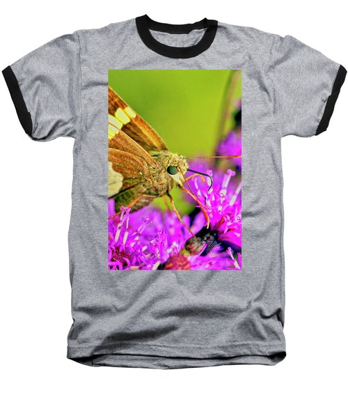 Moth On Purple Flower Baseball T-Shirt