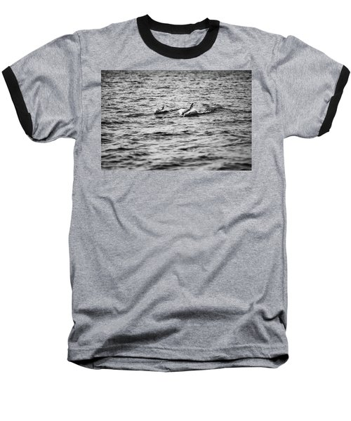 Mother Dolphin And Calf Swimming In Moreton Bay. Black And White Baseball T-Shirt