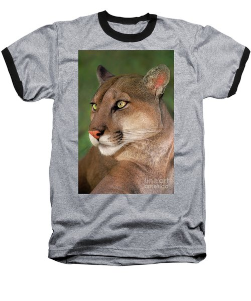 Mountain Lion Portrait Wildlife Rescue Baseball T-Shirt