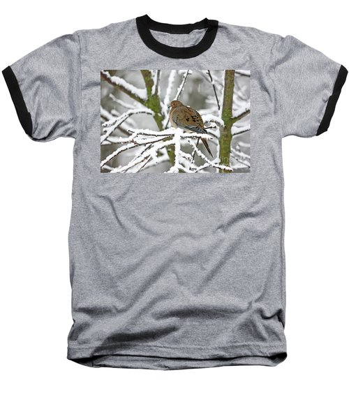 Mourning Dove In Snowstorm Baseball T-Shirt