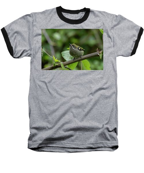 Moustached Tinkerbird Baseball T-Shirt