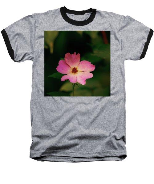 Multi Floral Rose Flower Baseball T-Shirt