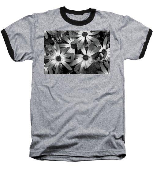 Multiple Daisies Flowers Baseball T-Shirt
