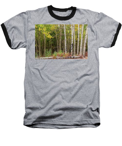Baseball T-Shirt featuring the photograph Nature Fallen by James BO Insogna