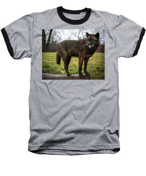 Niko Baseball T-Shirt