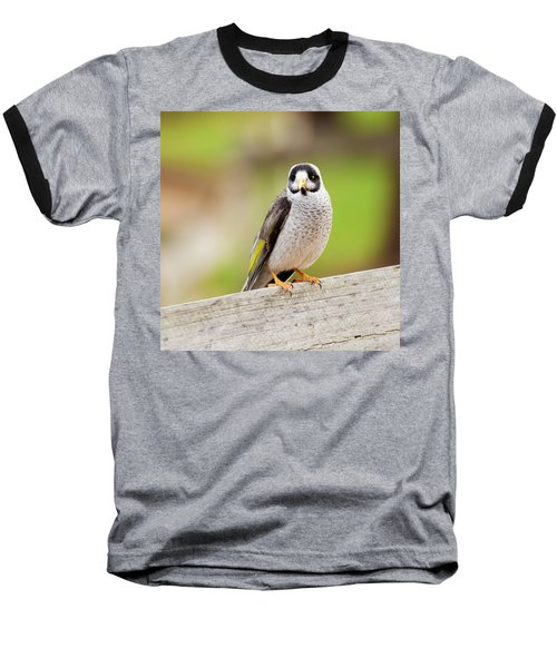 Noisy Miner Baseball T-Shirt
