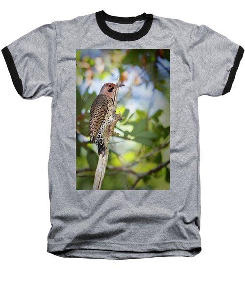 Northern Flicker Baseball T-Shirt