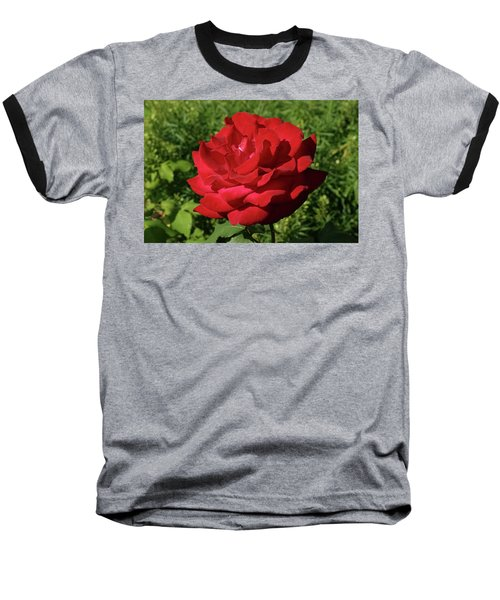 Oh The Blood Red Rose Baseball T-Shirt