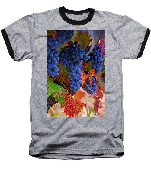 On The Vine II Baseball T-Shirt