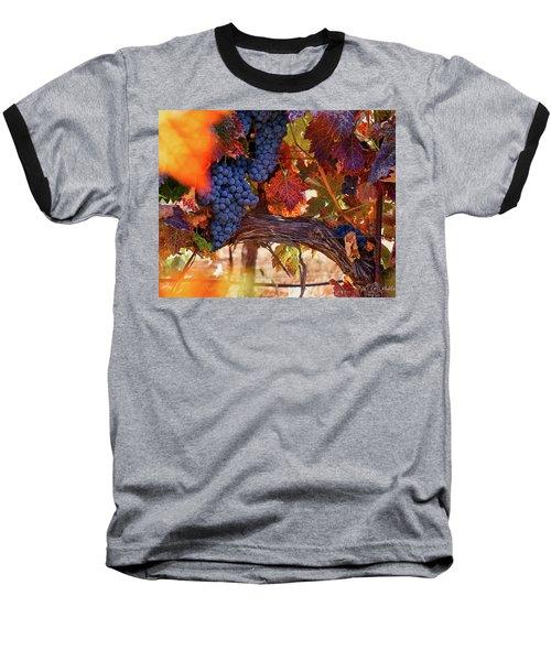 On The Vine Baseball T-Shirt